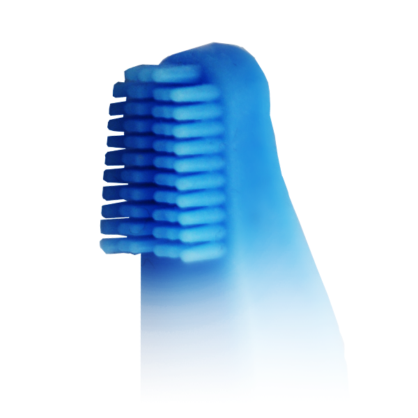 DentureBrush
